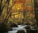 2017年10月 紅葉の奥入瀬渓流