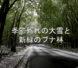 「季節外れの大雪と新緑のブナ林」の動画配信いたします。